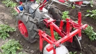 Первое окучивание картошки после посадки трактором.