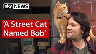 Nonton A Street Cat Named Bob Film Subtitle Indonesia Streaming Movie Download