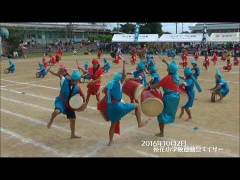 茶花小学校運動会2016:エイサー