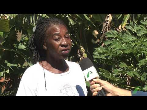 Ambiente Sustentável - Agricultura familiar - Prêmio destaque - Divino São Lourenço