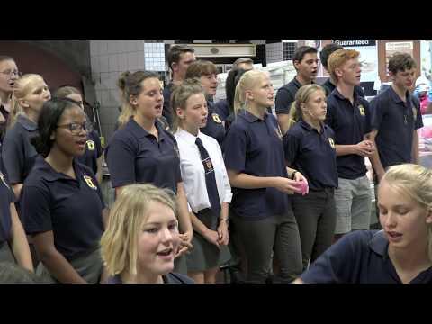 Flashmob! DHPS wirbt für die Orchesterwoche - DHPS advertises Orchestra week