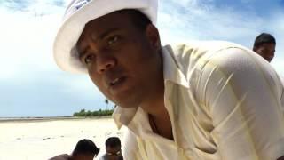 ARD - Kiribati - Ein Südseeparadies versinkt im Meer Die Bewohner von Kiribati spüren den Klimawandel hautnah. Mit künstlichen Mauern, Mangroven und ...