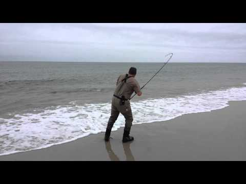 BLUEFISH Long Island – MAY 2014