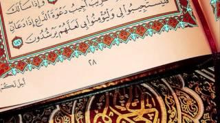 Nasser Al Qatami Surat Muhammad (Chapter 47) - Quran Recitation