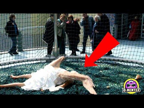 El Misterioso Caso de los Ángeles Caídos que Aparecieron en el Mundo