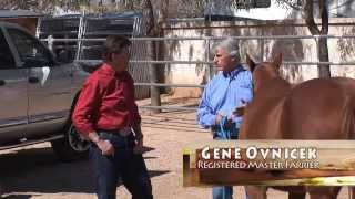 RFDTV Episode #16 - Tying Horses