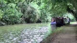 Little Berkhampstead United Kingdom  City new picture : Wotz @ Berkhamsted Canal Walk, Hertfordshire, UK