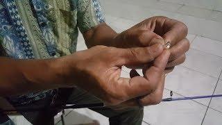 Download Video Cara Mancing Ikan Mas Yang Sulit Makan / Sakit Oleh Sang Juara Pak Ujang Cisarua Bogor MP3 3GP MP4