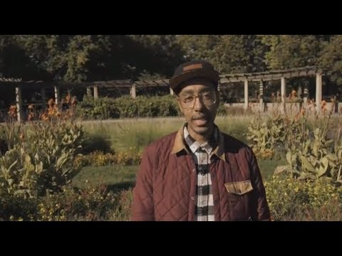 ODDISEE - OWN APPEAL (2013)