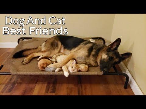 Как стать друзьями