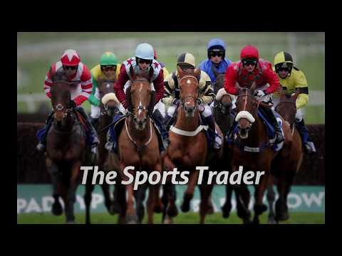 Trading A Cheltenham Race