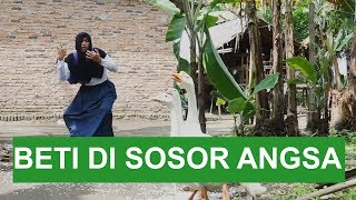 Video BETI DI SOSOR ANGSA MP3, 3GP, MP4, WEBM, AVI, FLV Januari 2019