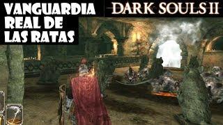 Dark Souls 2 guia: VANGUARDIA REAL DE LAS RATAS y juramento Rey Rata (pacto PvP) || Episodio 38