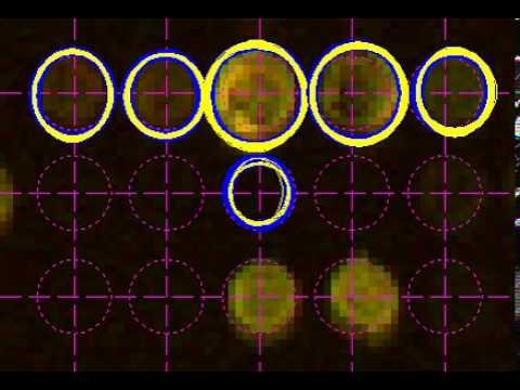 Video of Variational Importance Sampler Operating