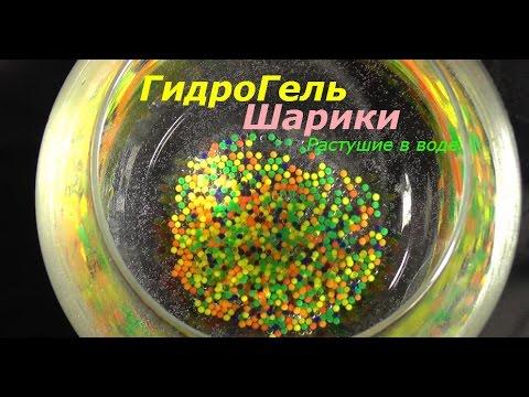 Как растут орбизы (гидрогелевые шарики) - RepeatYT - Twoje utwory w petli!