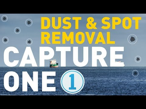 Dust and Spot Removal in Capture One Pro