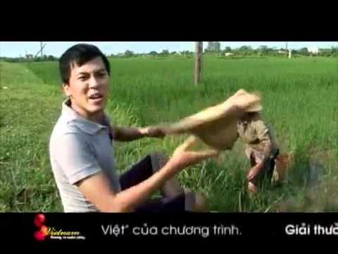 Xôi cá rô - Nam Định (S Vietnam - Hương vị cuộc sống)