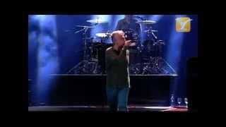 Download Lagu Jorge González, We Are Sudamerican Rockers, Festival de Viña 2013 Mp3