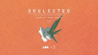 Download Lagu Squadpack x Samplified - Soulected [Sample Pack] Mp3