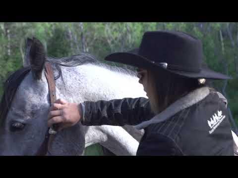 Provo Canyon Adventures Horseback Riding