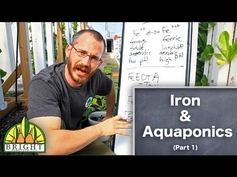 Getting Proper Iron In Your Aquaponics System