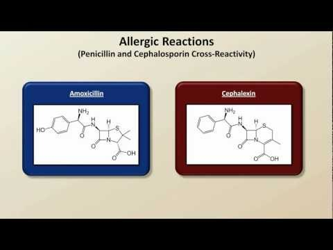 Important Side Effects and Toxicities (Antibiotics - Lecture 8)