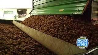 Video Nauka poszła w pole:  Na czym polega uprawa ziemniaków? (część 2/2) MP3, 3GP, MP4, WEBM, AVI, FLV November 2017