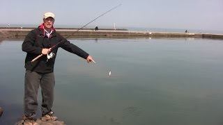Video Boatless Angler Shore Fishing Casting Techniques MP3, 3GP, MP4, WEBM, AVI, FLV Agustus 2018