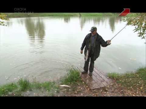 рыбалка в супер карпе форум последняя страница