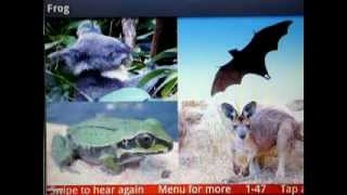 Wild Animals YouTube video
