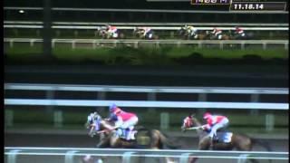 RACE 3 CLASSICAL BID 11/18/2014