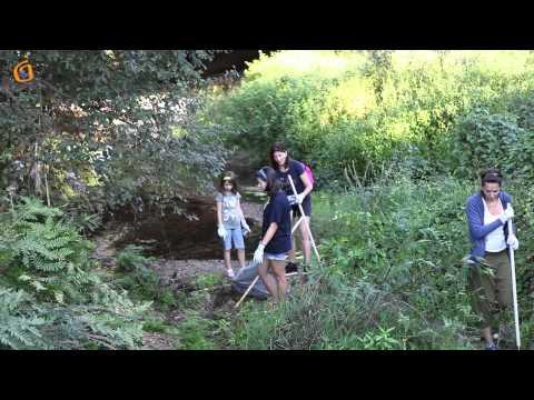 Limpeza nos ríos de Gondomar
