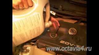 Замена масла в двигателе Шкода Октавия, видео