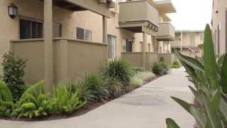 16405 Cornuta Apartments for rent Bellflower, CA