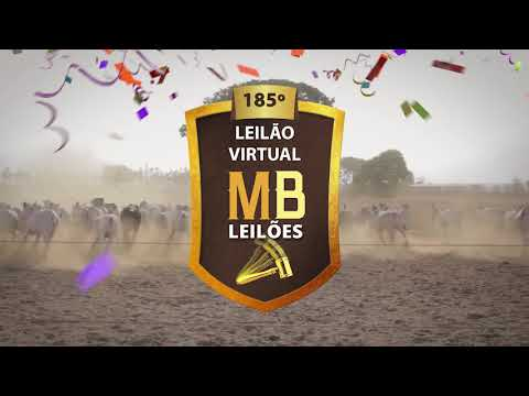 185º LEILÃO VIRTUAL MB LEILÕES
