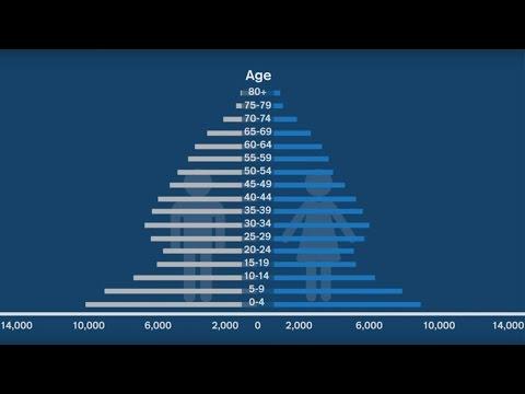 Demografia, mercati finanziari e produttività