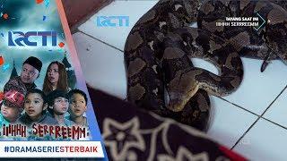 Video IH SEREM - Gawattt Ada Ular Di Rumah Bu Messy [9 Januari 2018] MP3, 3GP, MP4, WEBM, AVI, FLV Agustus 2018