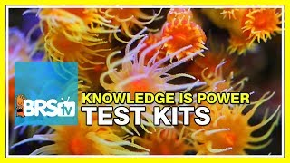Week 34: Reef parameters: Our favorite test kits explained | 52 Weeks of Reefing #BRS160