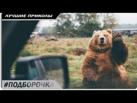 РУССКИЕ ВИДЕО ПРИКОЛЫ 2018 года ржачные - смех до слез