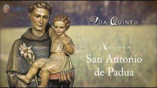 DÍA 5 - NOVENA SAN ANTONIO DE PADUA