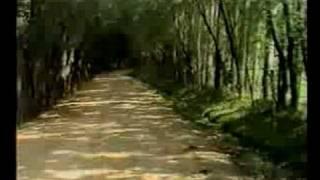kuscu köyü sariz kayseri