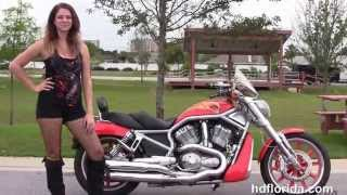 3. Used 2006 Harley Davidson Street Rod Motorcycles for sale in Crestview FL