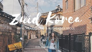 Zapangi, Gyeongbokgung Palace & Bukchon Hanok Village | Zuid-Korea Vlog #02 | Elize in Wonderland
