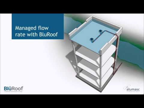 BluRoof Stormwater Management