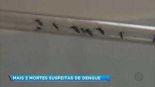 Mais duas mortes por suspeita de dengue são investigadas na região