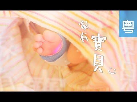 電視節目 TV1475 家有寶貝 (HD粵語) (多倫多系列)