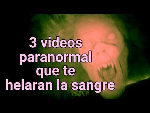 3 VIDEOS QUE TE HELARAN LA SANGRE