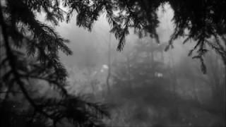 BON IVER & ST. VINCENT - ROSLYN (WITH RAIN SOUNDS)