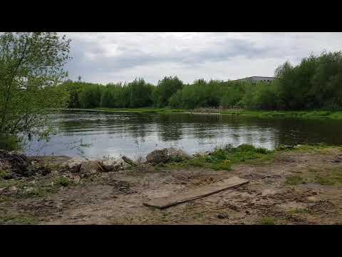 Выкачивают реку для собственных целей