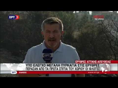 Video - Υπό έλεγχο η φωτιά στη Θέρισσο Χανίων